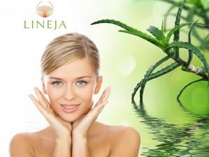 lineja-1_logo_obraz